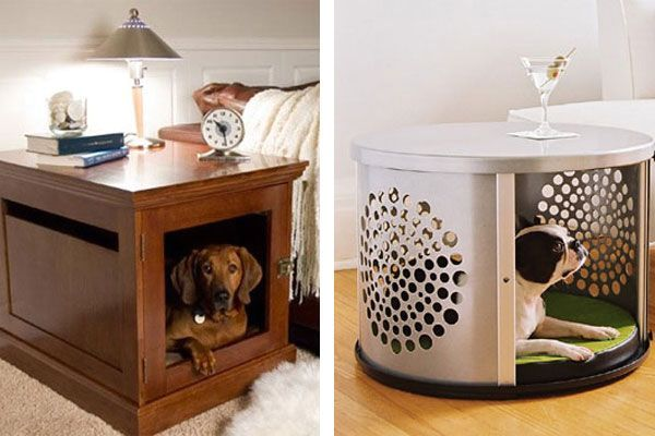 home booth for the dog - a table for the hosts