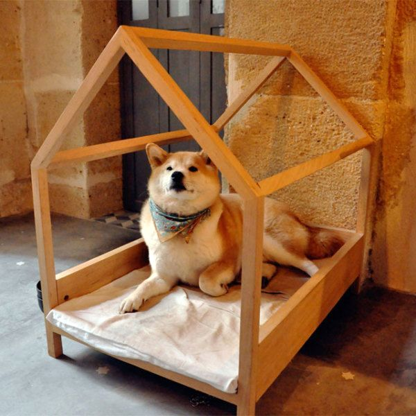 houses for dogs