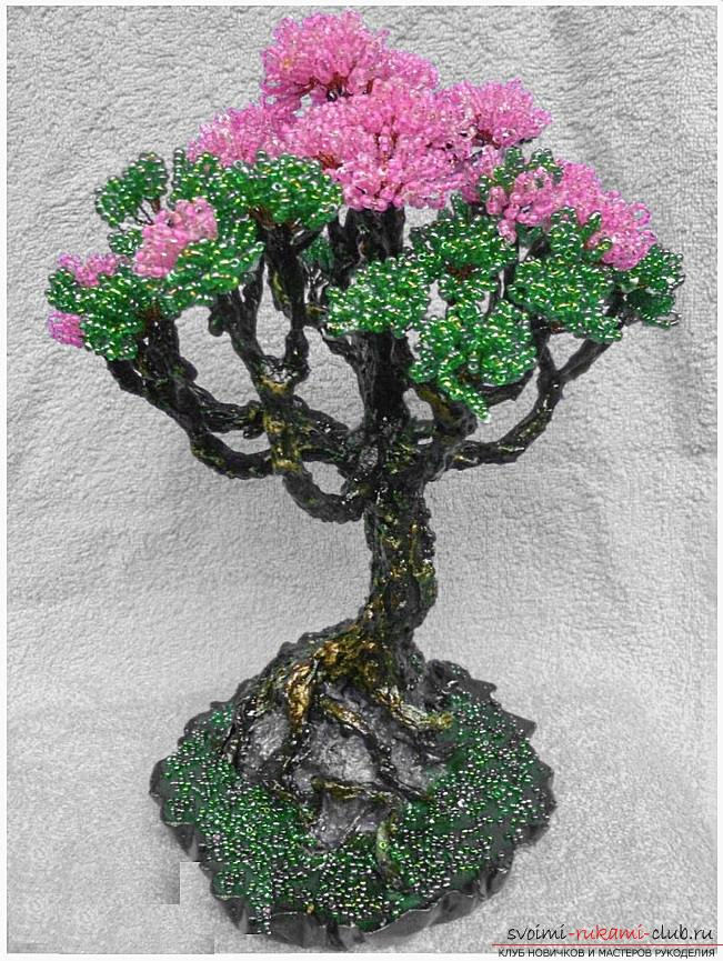 How to make a bonsai tree of beads with your own hands, several master classes of creating bonsai in different color solutions, step-by-step photos and description. Photo №13