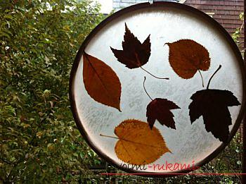 Crafts own, autumn crafts that can be made from leaves, autumn glass ball, paintings on the theme of autumn, detailed instructions and phased photos .. Photo # 18