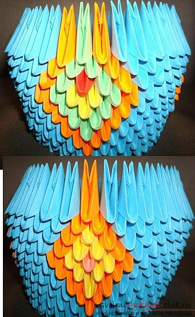 How to make a peacock in the technique of modular origami, step-by-step photos and detailed work description, color solutions in the execution of peacock feathers with