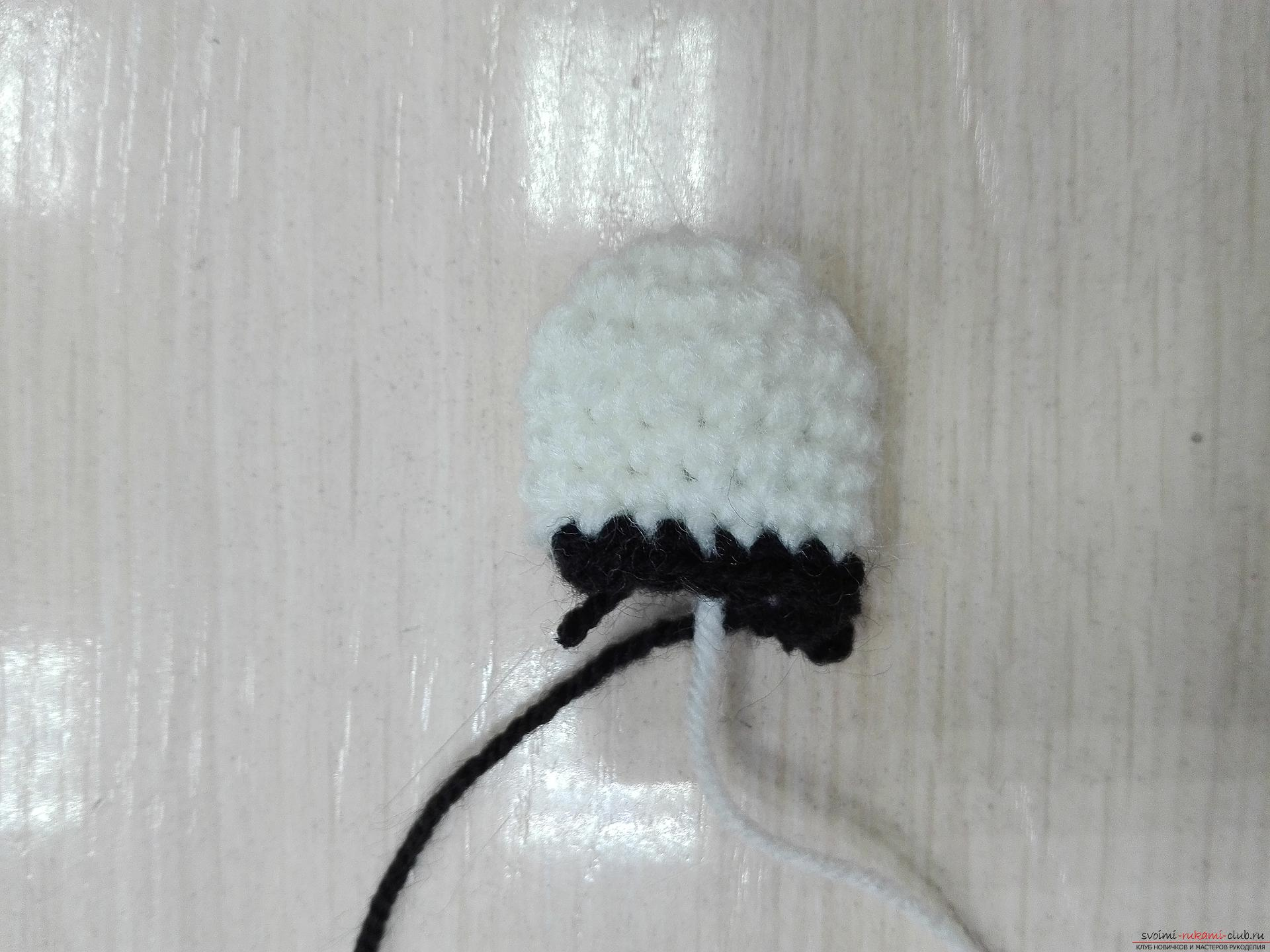 This master class toy itself teach how to tie a zebra crochet. Photo Number 21