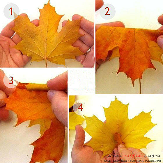 Making roses from maple leaves with their own hands .. Photo # 1