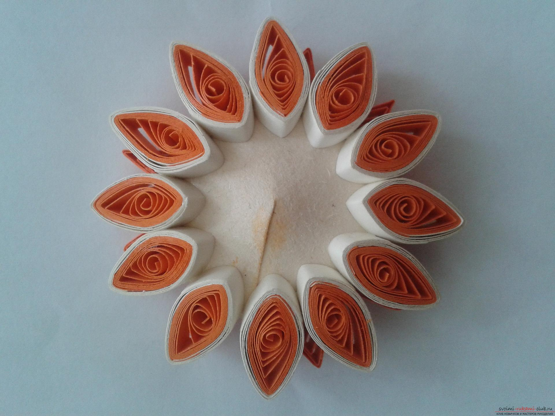 This detailed master-class will acquaint you with quilling technique, teach you how to make quilling flowers and quilling paintings .. Photo # 6