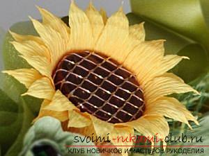 How to make a bouquet of wildflowers in suite design, step-by-step photos of making poppy, chamomile, sunflower, cornflower and crocus. Photo №26