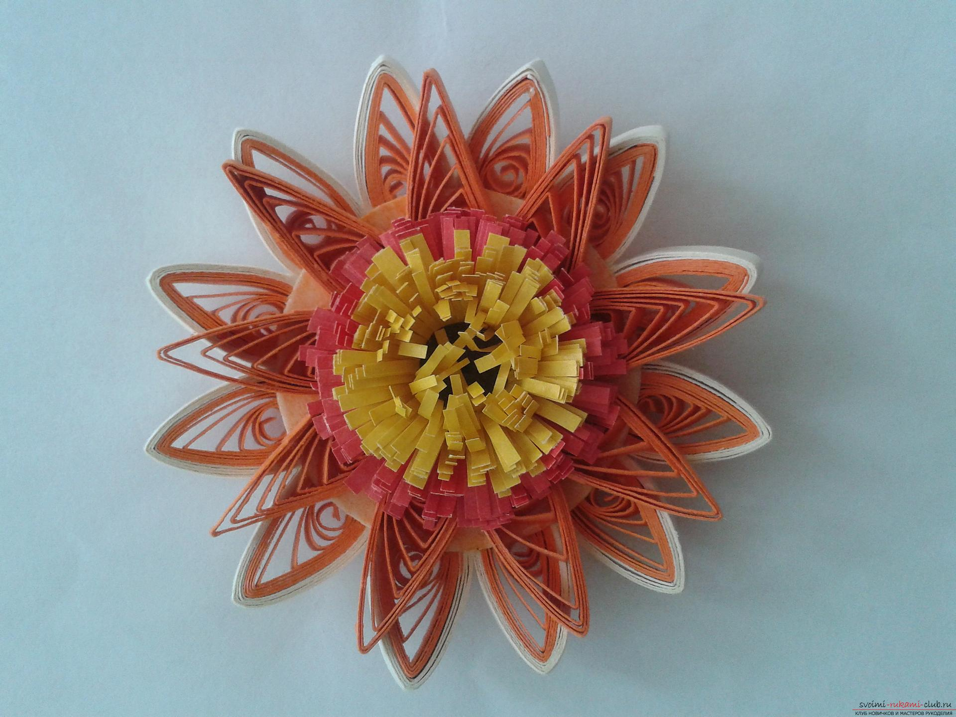 This detailed master class introduces quilling techniques, learns how to make quilling flowers and quillings. Photo # 7