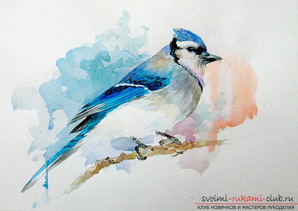 Een waterverfvogel tekenen. Foto №5