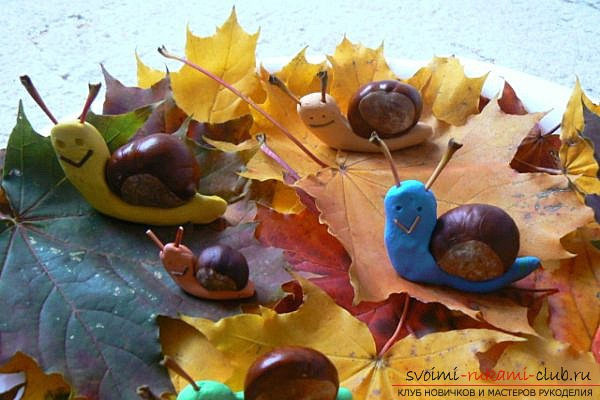 Here's what can be done from chestnuts .. Photo №15
