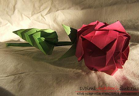 Rose-origami for novice paper masters - a scheme for work and a master class. Photo №1