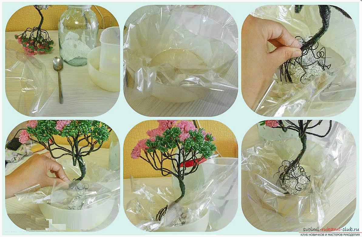 How to make a bonsai tree of beads with your own hands, several master classes of creating bonsai in different color solutions, step-by-step photos and description. Photo number 17