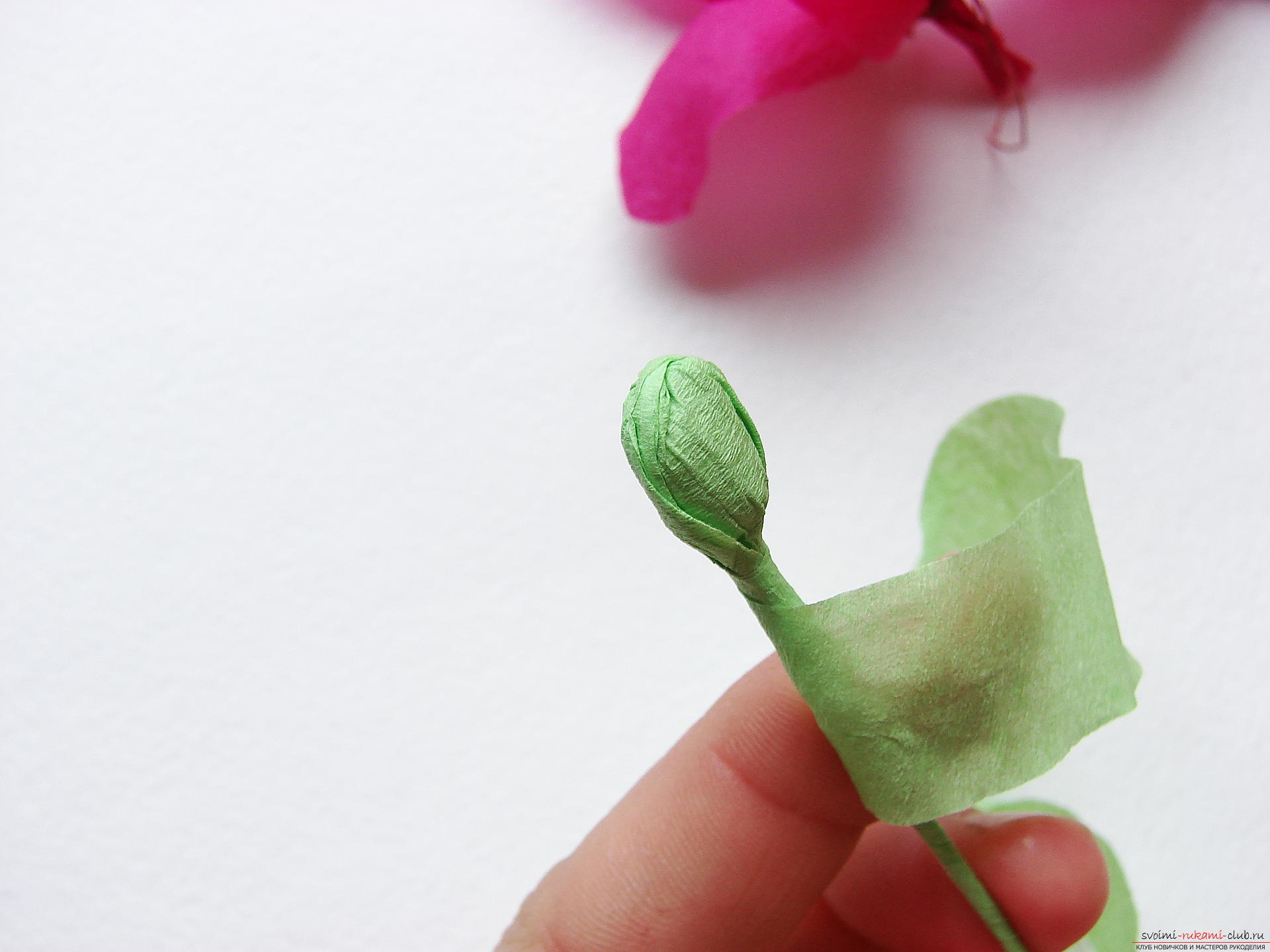 This master class will teach you how to make gladioli flowers from paper with your hands .. Photo # 23