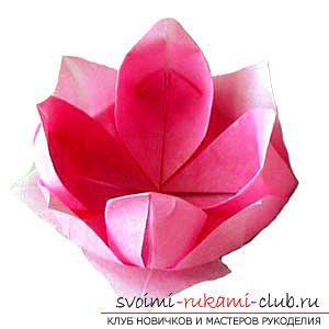 Hoe maak je handgemaakte artikelen in de klassieke origami, maak een kerstboom in de techniek van modulaire origami .. Foto # 1