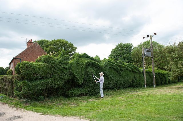 green fence in the form of a dragon