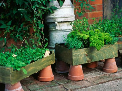 Ideas for cottages. How to make beautiful flower beds with your own hands.