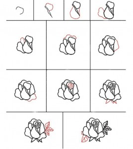 How to draw a rose picture in stages. We study drawing with children.