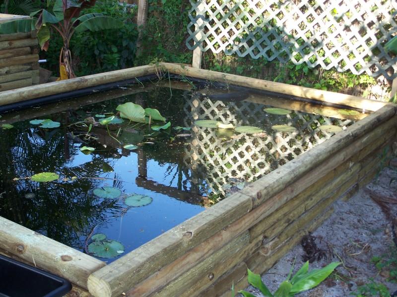 Как да направите езерце в страната със собствените си ръце (3)