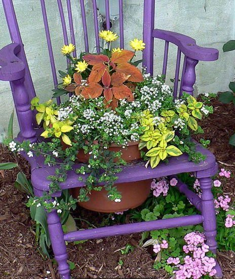 purple flower bed from a chair