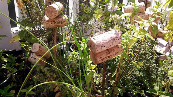 Labels for plants in a wine cork garden