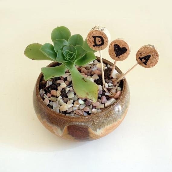 Wine cork signatures for indoor plants