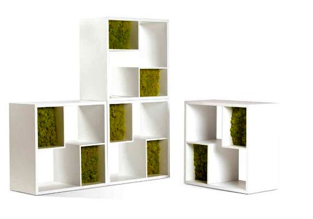 Moss Design decorative moss