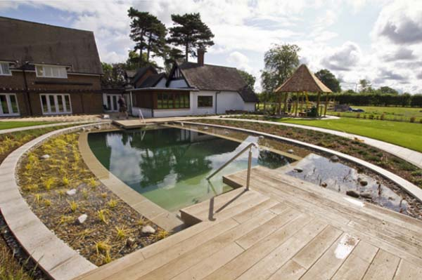Pool pond with terrace