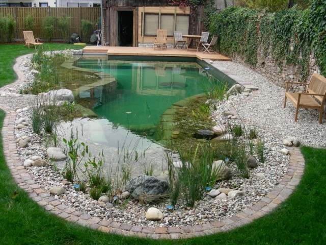 swimming pond - swimming pool