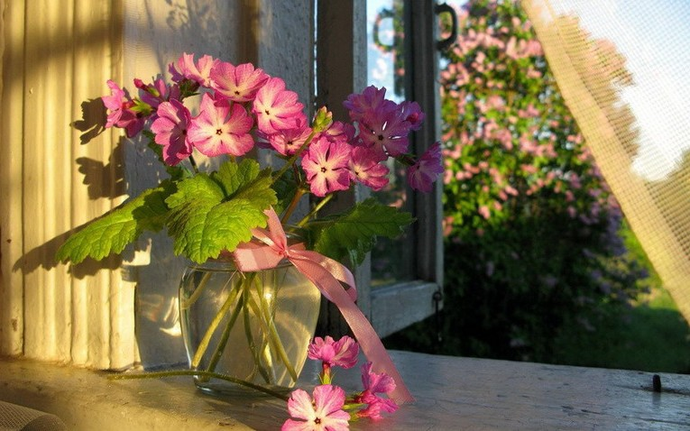 We decorate the windowsill with a vase with flowers
