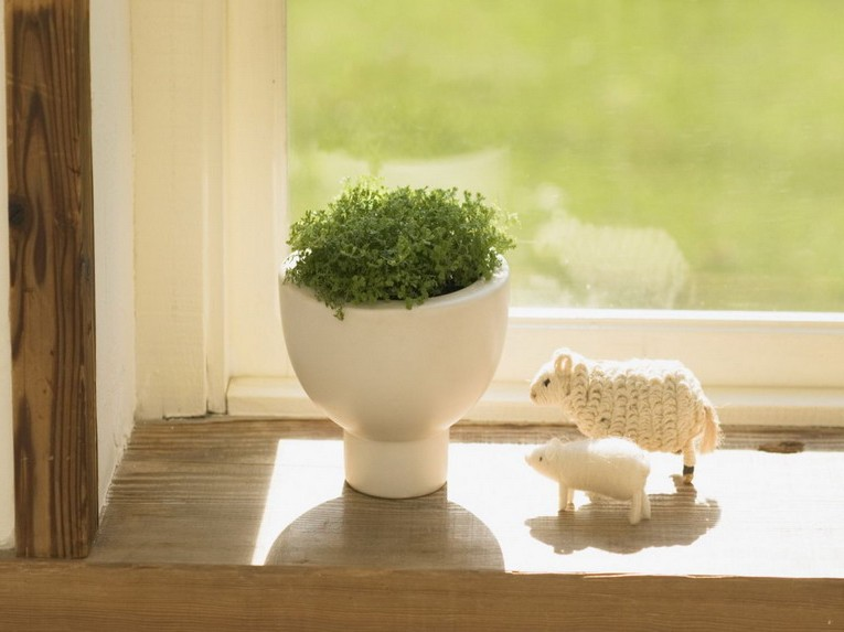 Charming rustic window sill decor