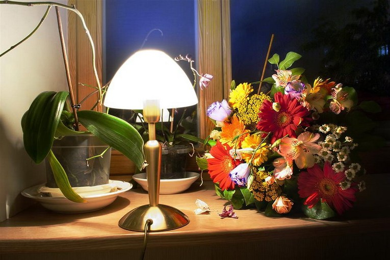 Simple window and window sill decor: floor lamp and flowers