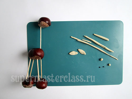 Autumn crafts from chestnuts for kindergarten: master class