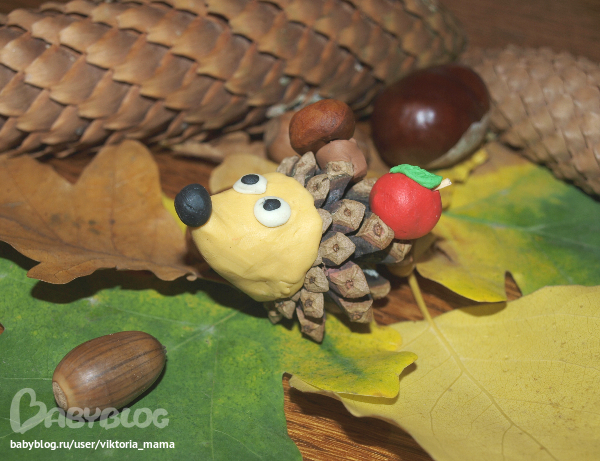 Crafts from cones with your own hands - Hedgehogs