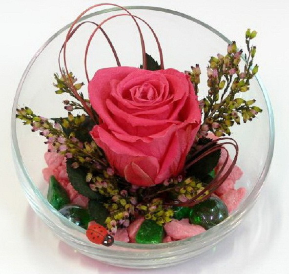 Dry bouquets for decoration can also please with bright colors.
