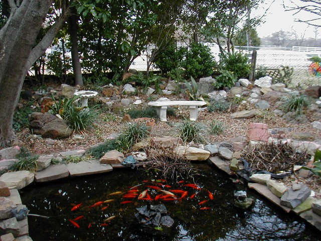 rectangular ornamental pond