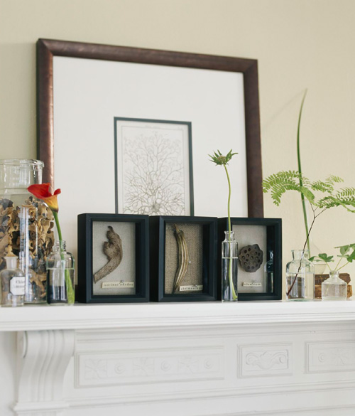 gifts of nature on the shelf, ideas for the house with their own hands