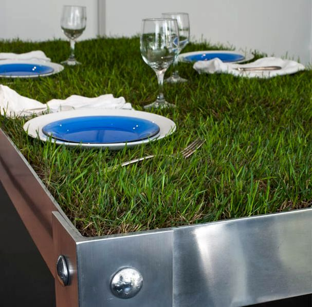 table with lawn picnyc