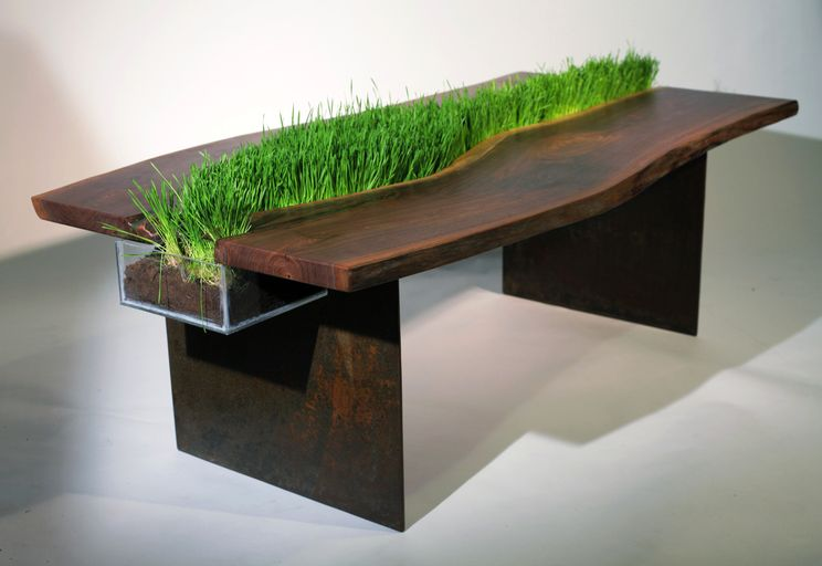 table with grass Emily Wettstein