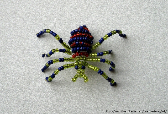 Thick Spider