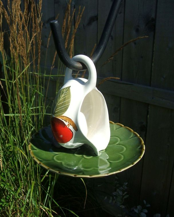 Drinking bowl for birds with their hands from a cup and saucer