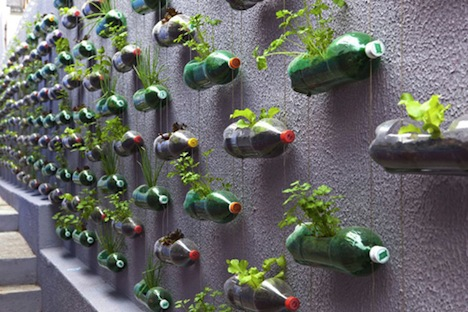 Vertical garden of plastic bottles with your own hands