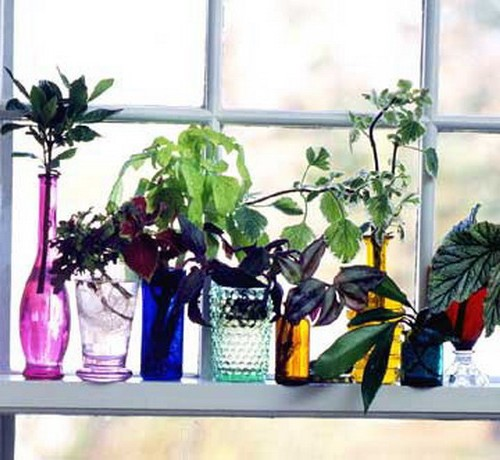 Bright vases with flowers to decorate the window and window sill photo